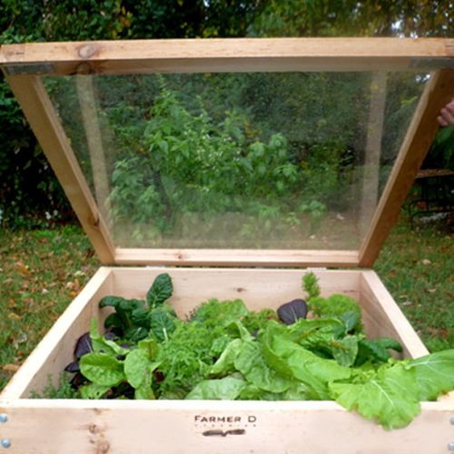 cold frame_opt (1)